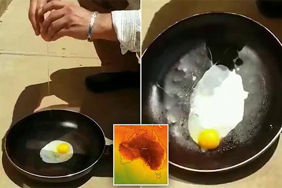 Egg Fry on Floor